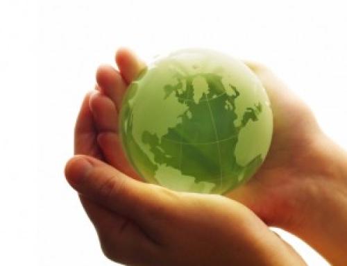 Políticas de Sostenibilidad de Selva Mar